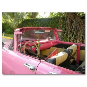 Αφίσα (αυτοκίνητο, δέντρο, ροζ)
